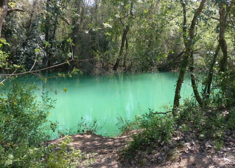 Trail – Parcours NaturaTrail du Pays de Fayence (21km)
