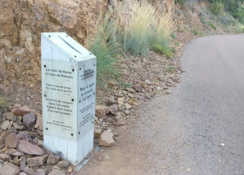 Randonnée : Sentier biologique des senteurs – Rocher Saint-Barthélémy