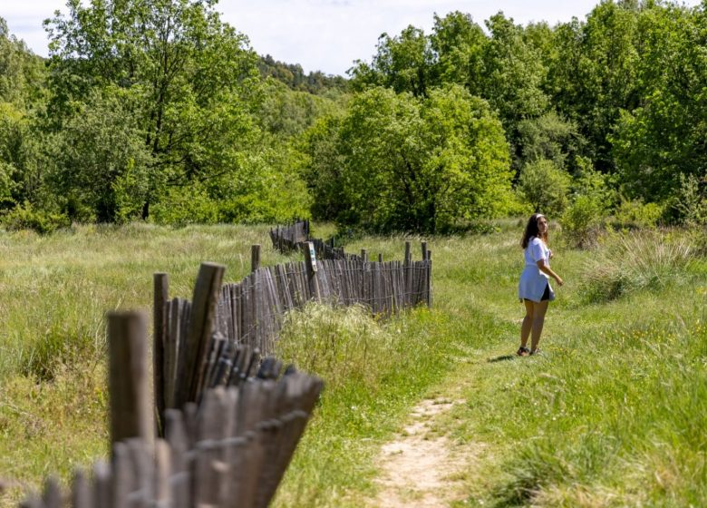 Randonnée : Découverte du Biotope de Fondurane