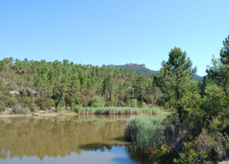 Randonnée : Circuit des 3 lacs