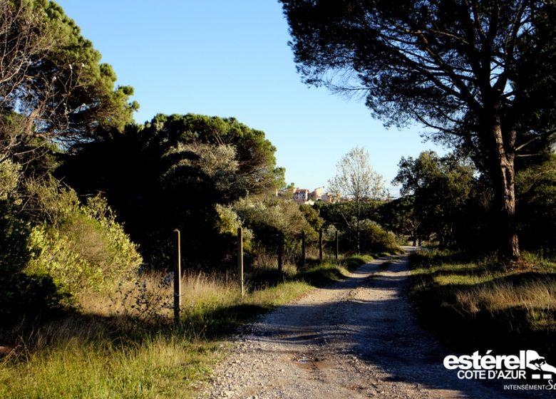 Randonnée : Chemin de Compostelle