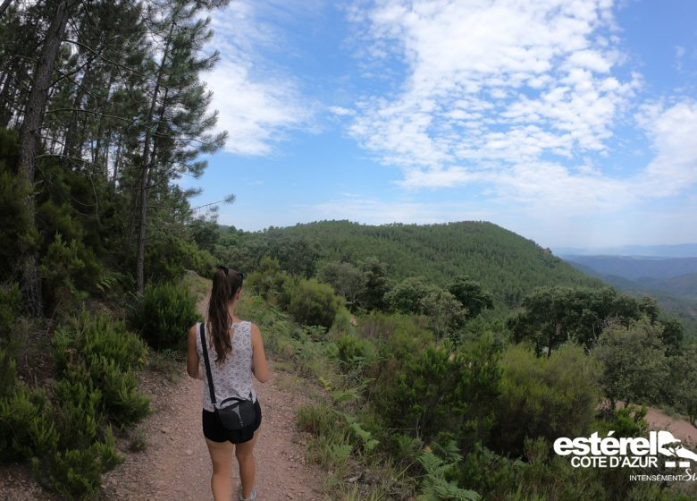 Randonnée : Le tour du Mont Vinaigre