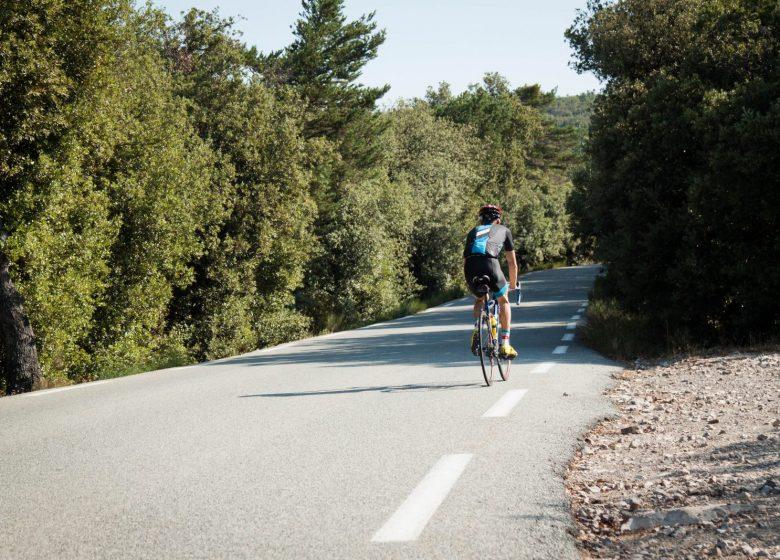 Circuit vélo : Eurovélo 8