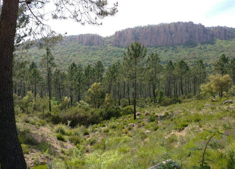 Circuit VTT : Les Gorges du Blavet